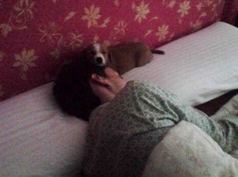 Mila y David durmiendo
